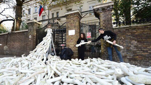 Протести испред амбасаде Русије у Лондону - Sputnik Србија