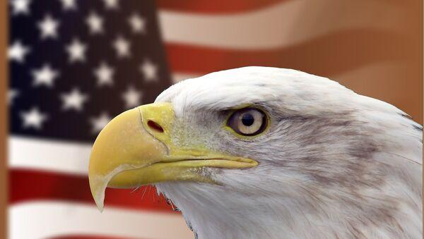 Америка, САД - Sputnik Србија