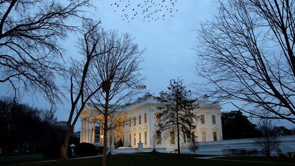 Jato ptica leti iznad Bele kuće u Vašingtonu - Sputnik Srbija