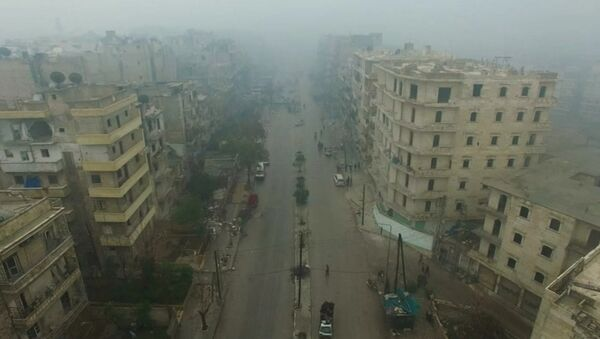 Pogled na istočni deo Alepa u Siriji - Sputnik Srbija