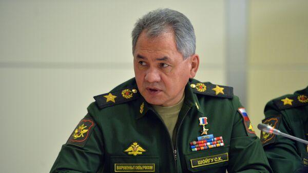 Ministar odbrane Rusije Sergej Šojgu - Sputnik Srbija