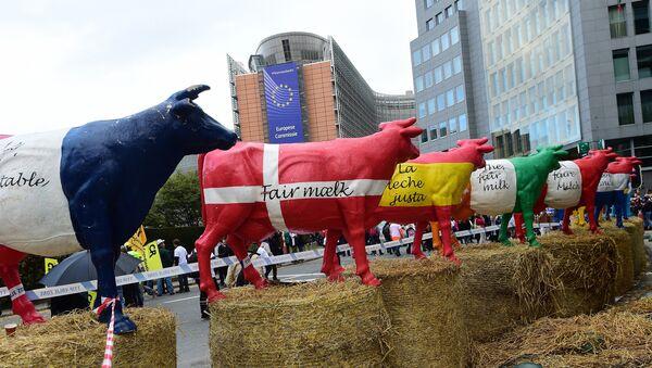 Krave  u bojama zastava zemalja EU ispred zgrade  Evropske Komisije - Sputnik Srbija