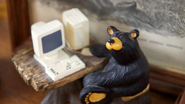 Ruski medved haker - Sputnik Srbija