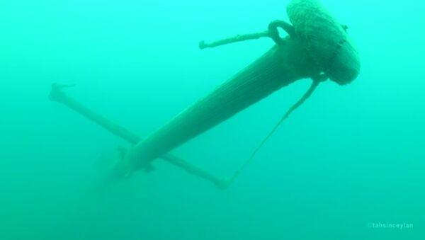 Pronađen ruski brod na dnu jezera Van - Sputnik Srbija