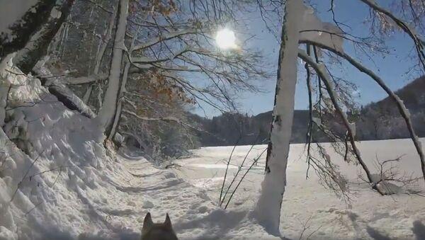 Плитвичка језера - Sputnik Србија