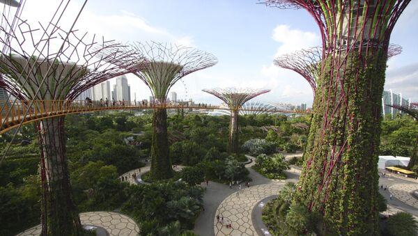 Башта поред залива у Сингапуру - Sputnik Србија