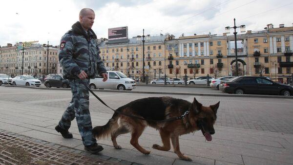 Припадник полиције са псом патролира улицама Санкт Петербурга - Sputnik Србија