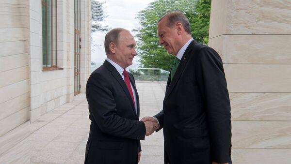 Sastanak predsednika Rusije i Turske Vladimira Putina i Redžepa Tajipa Erdogana u Sočiju - Sputnik Srbija