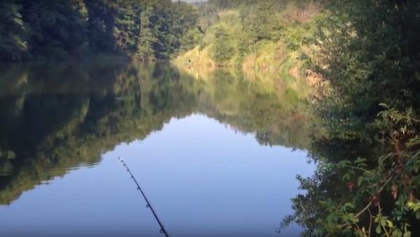 Језеро Ћелије - Sputnik Србија
