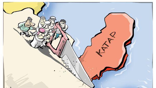 Острво Катар - Sputnik Србија