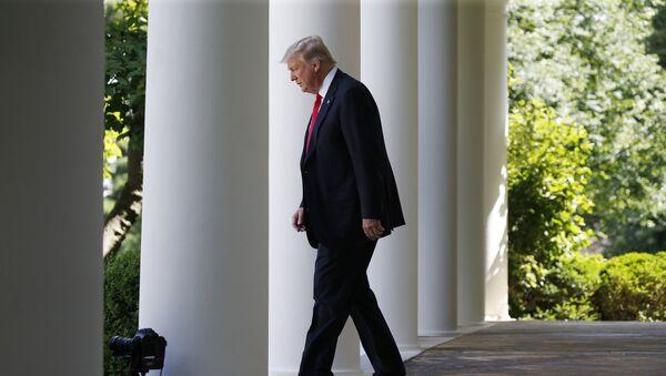 Predsednik SAD Donald Tramp ispred Bele kuće u Vašingtonu - Sputnik Srbija