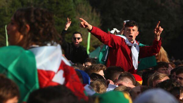 Навијачи Велса пре утакмицу између Велса и Белгије у Кардифу - Sputnik Србија