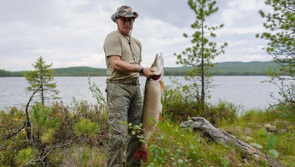 Predsednik Rusije Vladimir Putin na pecanju u Krasnojarskom kraju - Sputnik Srbija
