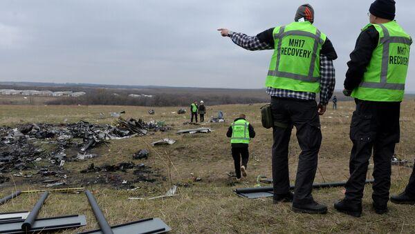 Холандски експерти на место пада Боинга у Донбасу - Sputnik Србија