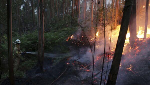 Požar u Portugalu - Sputnik Srbija