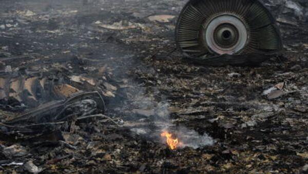 Место рушења авиона Боинг 777 на лету МХ-17 у Доњецкој области - Sputnik Србија