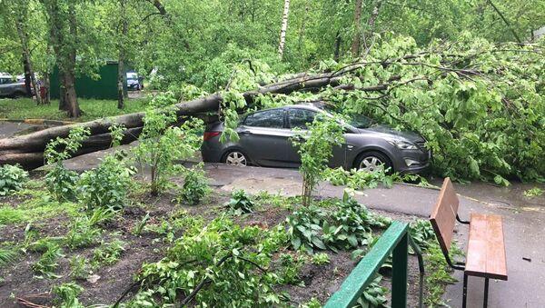 Ураган у Москви - Sputnik Србија