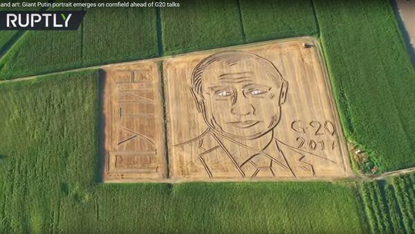 Putinov portret nacrtan traktorom - Sputnik Srbija