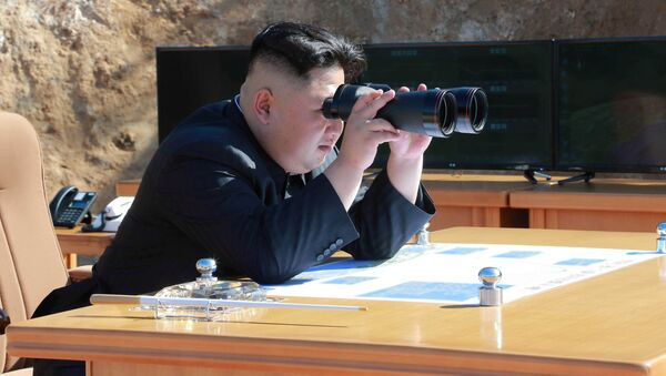 Kim Džong Un, lider Severne Koreje - Sputnik Srbija