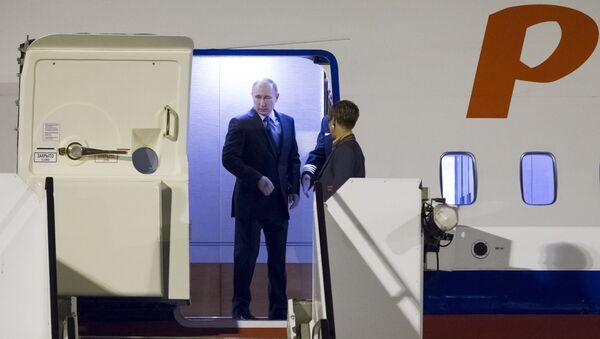 Predsednik Rusije Vladimir Putin izlazi iz aviona po dolasku na samit G20 u Hamburgu - Sputnik Srbija