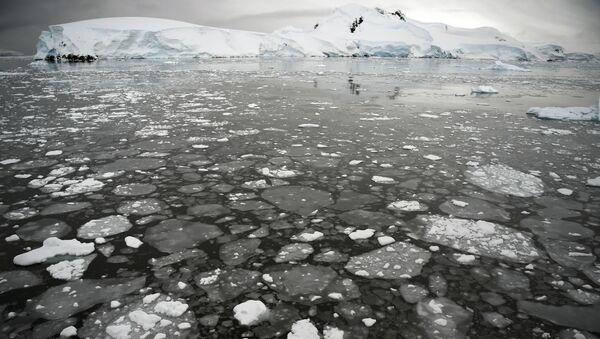 Ledяnыe poplavki na poverhnosti morя u Antarktičeskogo poluostrova - Sputnik Srbija