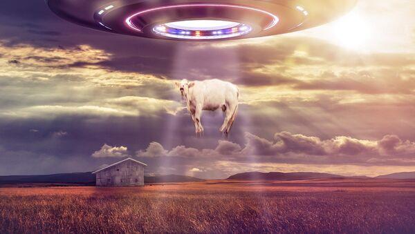 Ванземаљци отимају краву - Sputnik Србија