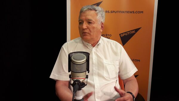 Zoran Avramović - Sputnik Srbija