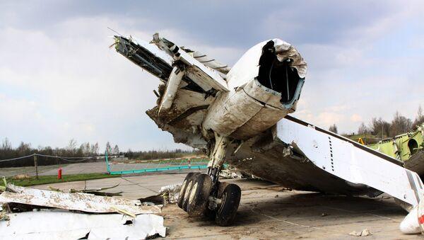 Olupina poljskog vladinog aviona Tu-154 na aerodromu u Smoljensku - Sputnik Srbija