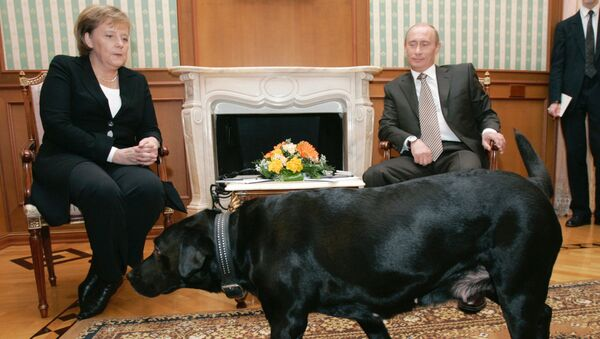 Nemačka kancelarka Angela Merkel i predsednik Rusije Vladimir Putin tokom sastanka u Rusiji - Sputnik Srbija