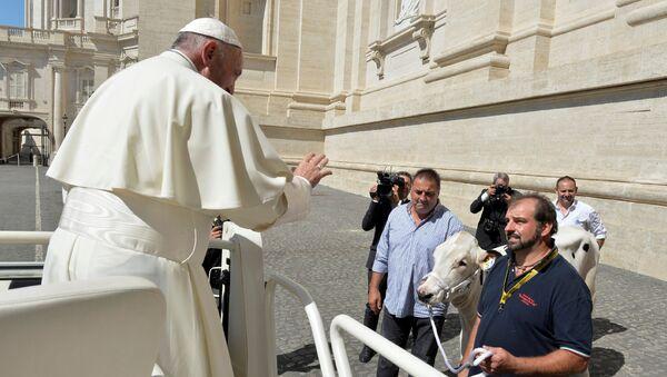 Папа добио краву на поклон - Sputnik Србија