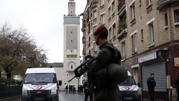 Француски војник и полицијске патроле испред Велике џамије у Паризу. - Sputnik Србија