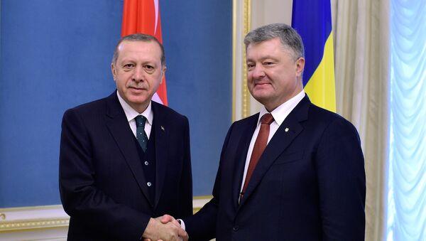 Turski predsednik Redžep Tajip Erdogan i predsednik Ukrajine Petro Porošenko - Sputnik Srbija