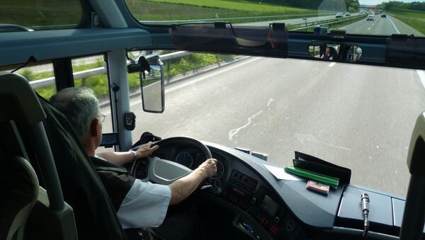 Vozač autobusa - Sputnik Srbija