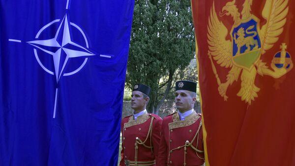 Контрахибридни тим нема за циљ само Црну Гору... - Sputnik Србија