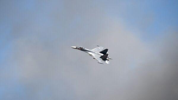Avion Su-35 na aero-mitingu u Rjazanskoj oblasti - Sputnik Srbija