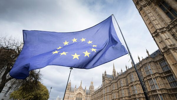 Zastava Evropske unije na ulici u Londonu - Sputnik Srbija