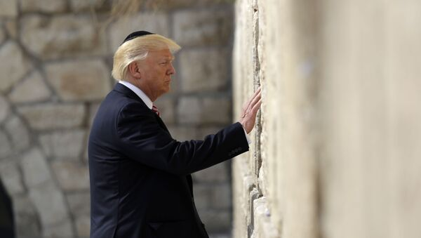 Predsednik Donald Tramp pored Zida plača - Sputnik Srbija