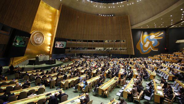 Generalna skupština Ujedinjenih nacija izjašnjava se o egipatskoj rezoluciji. - Sputnik Srbija