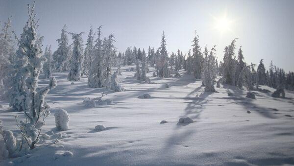Zima u Ojmjakonu - Sputnik Srbija