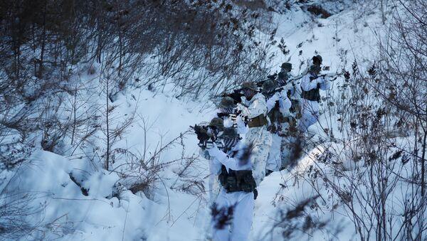 Јужнокорејски и амерички маринци током зимских војних вежби у Пјонгчангу у Јужној Кореји - Sputnik Србија