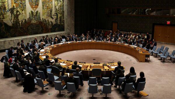 Заседање Савета безбедности УН - Sputnik Србија