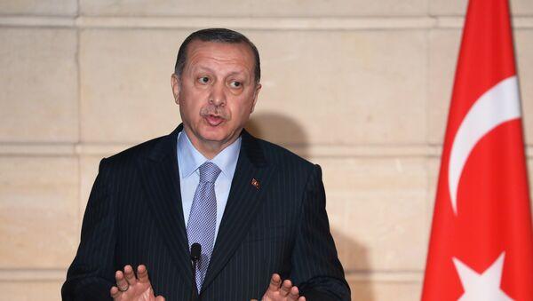 Predsednik Turske Redžep Tajip Erdogan na zajedničkoj konferenciji za medije sa francuskim predsednikom Emanuelom Makronom u Jelisejskoj palati u Parizu - Sputnik Srbija