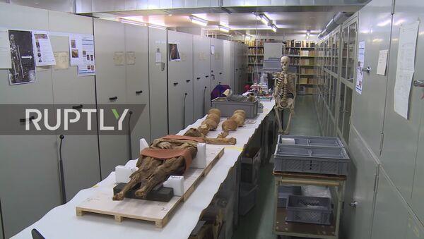 Mumija u muzeju u Bazelu - Sputnik Srbija