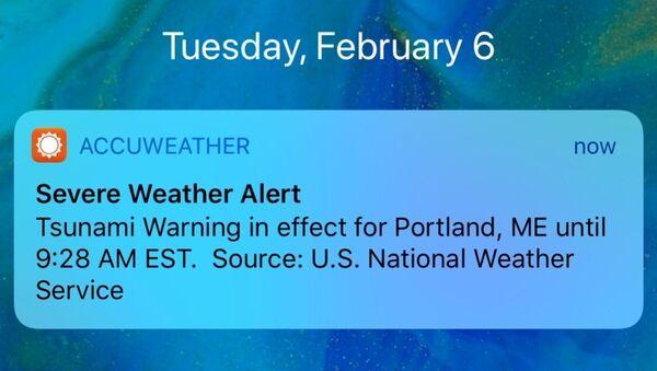 Lažno upozorenje za cunami u Americi - Sputnik Srbija