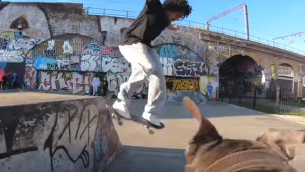 Пас камерман снима скејтбордисте - Sputnik Србија