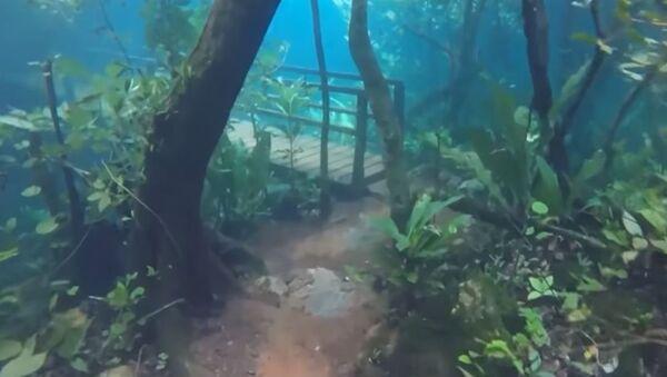 Шеталиште под водом - Sputnik Србија