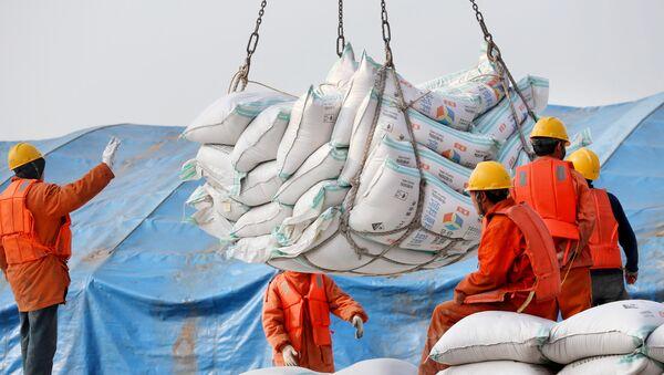 Radnici istovaruju proizvode od soje u luci Nantong u Kini - Sputnik Srbija