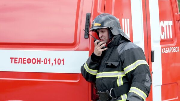 Vatrogasac pored vatrogasnog vozila - Sputnik Srbija