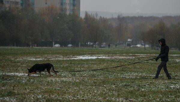 Sneg u Moskvi - Sputnik Srbija