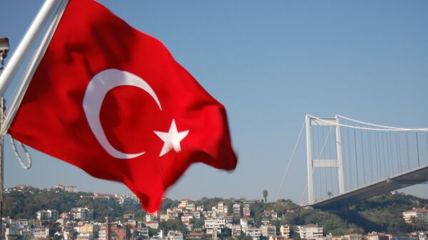 Турска застава и мост преко Босфора - Sputnik Србија